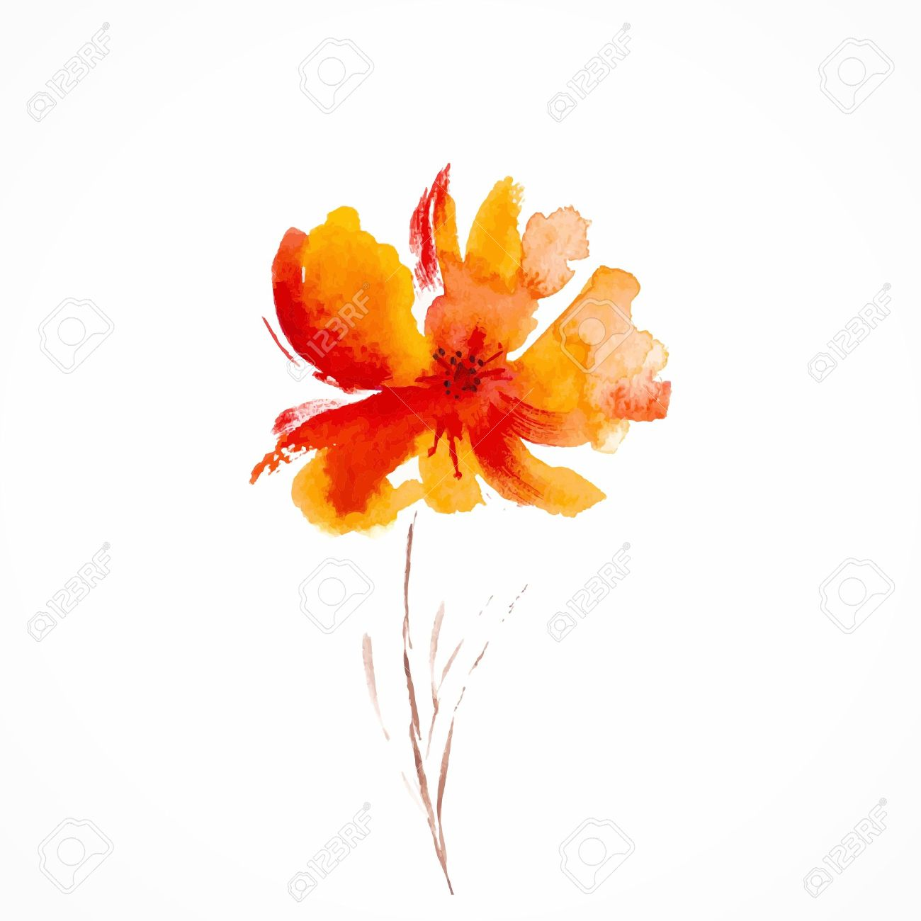 Orange Flower Watercolor Floral Decorative Element Vector Background Stock With Png