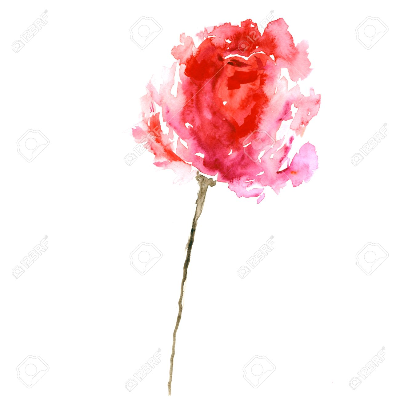 Red Flower Watercolor Rose Birthday Card Single Stock Photo
