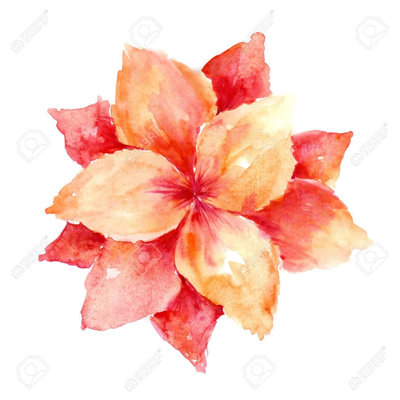 Fleur Aquarelle Decor Floral Floral Card D Anniversaire Banque D