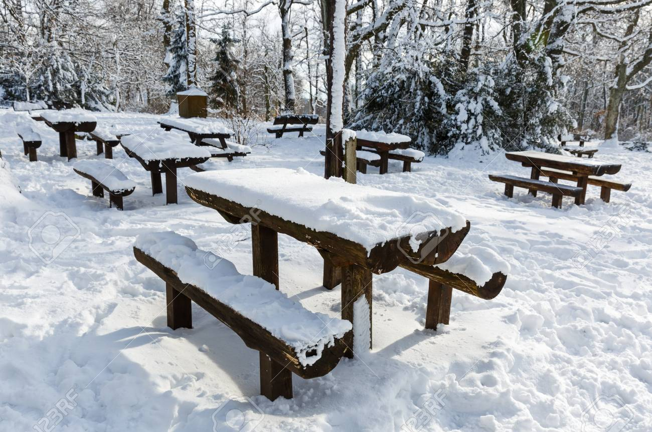 Super Picnic Tables And Benches Covered With Snow In The Park Caraccident5 Cool Chair Designs And Ideas Caraccident5Info
