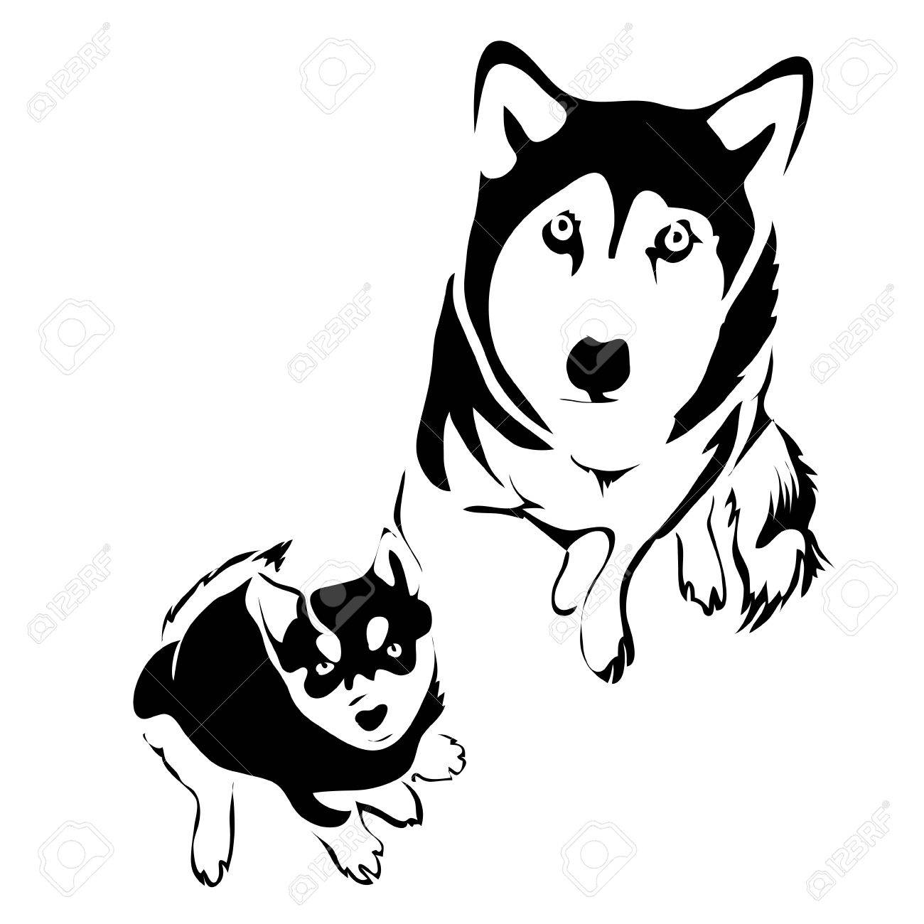 Outline Dog And Puppy Husky Top View Vector Template Royalty Free