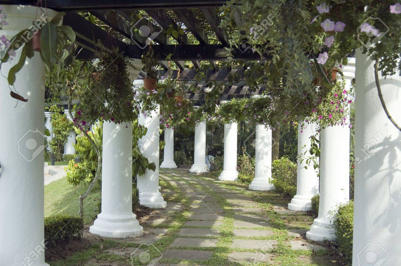 This is a beautiful shaded garden walk way which decorated with Rome Pillar at the both side and cover with plant on the overhead Stock Photo - 7347300