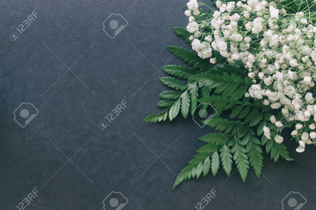 Gypsophila White Baby S Breath Flower On Black Granite Table Stock Photo Picture And Royalty Free Image Image 142838317