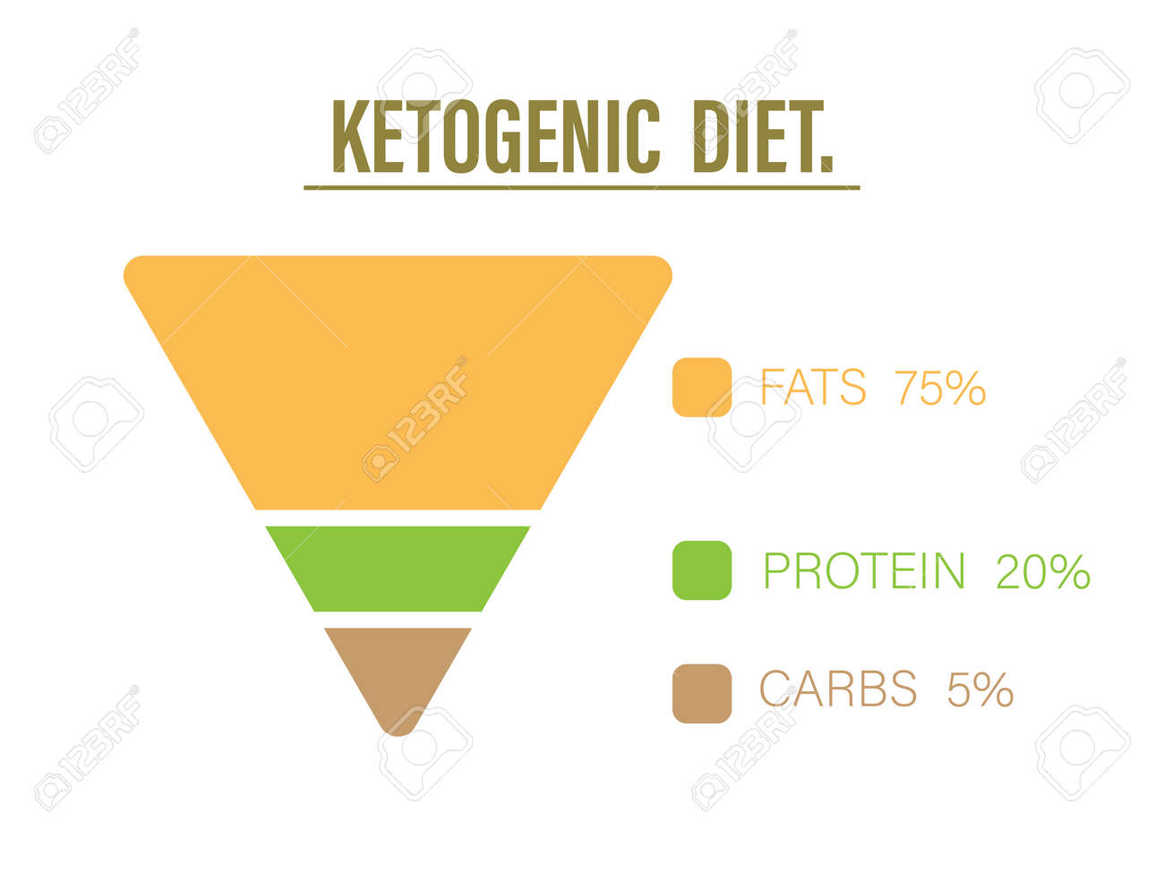 Ketogenic diet food pyramid to show proportion 75% healthy fat, 20% protein and 5% carbohydrate, keto diet infographic or diagram, lose weight trend, Vector illustration art design for healthy concept - 158656048