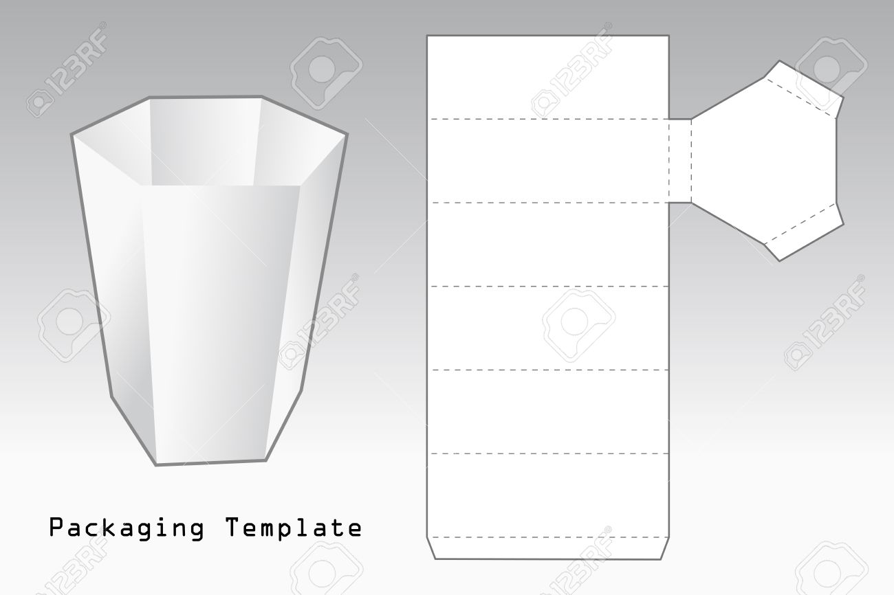 Packaging Template A Case With Six Sides Stock Vector