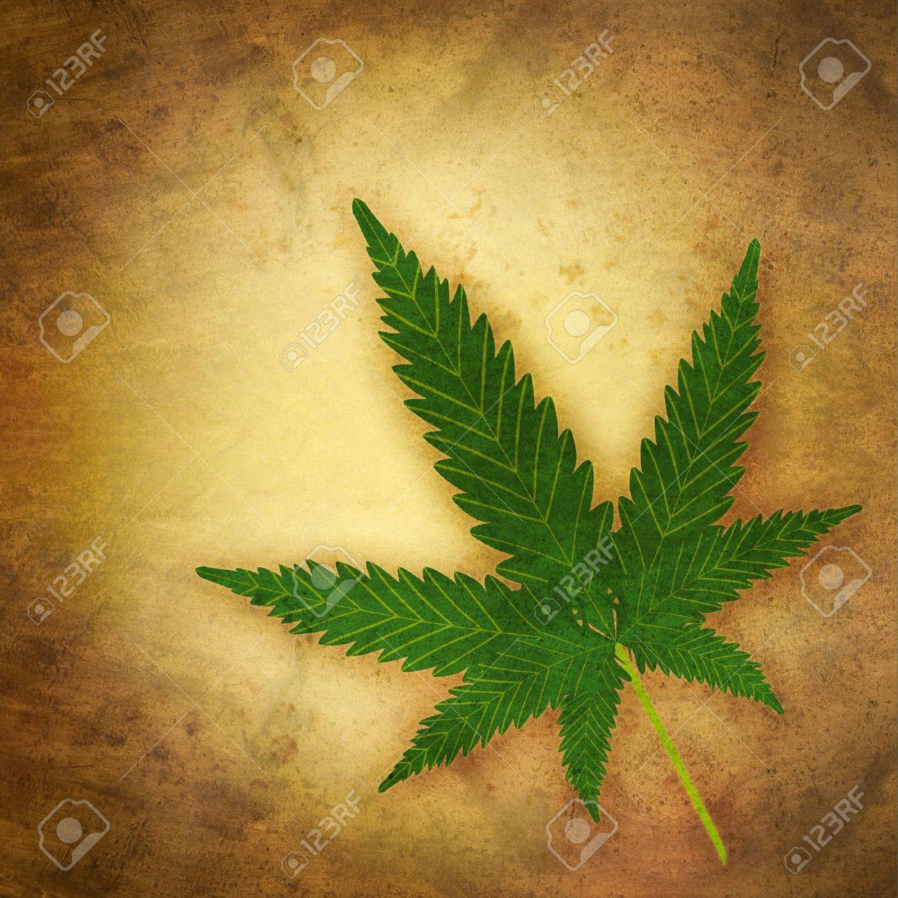 cannabis leaf in grunge style Stock Photo - 12806920