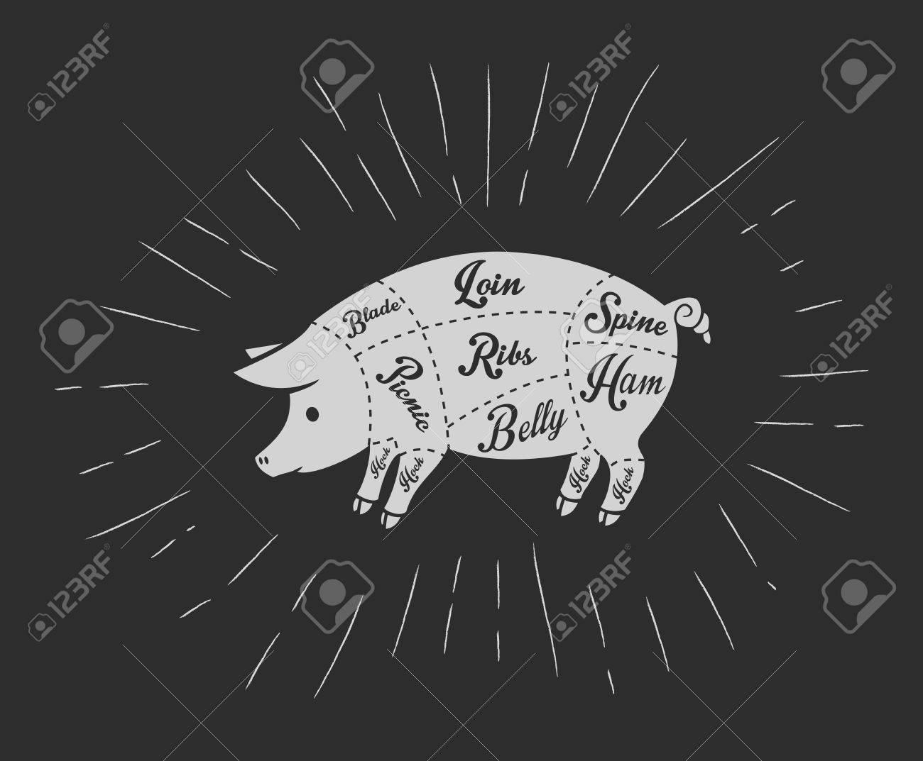Pork meat cuts in vintage blackboard style - 50612149