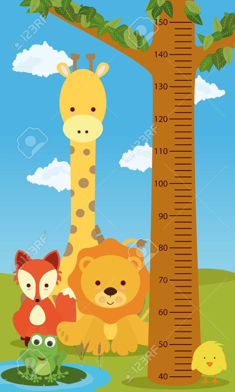 Height chart animals - 59288301