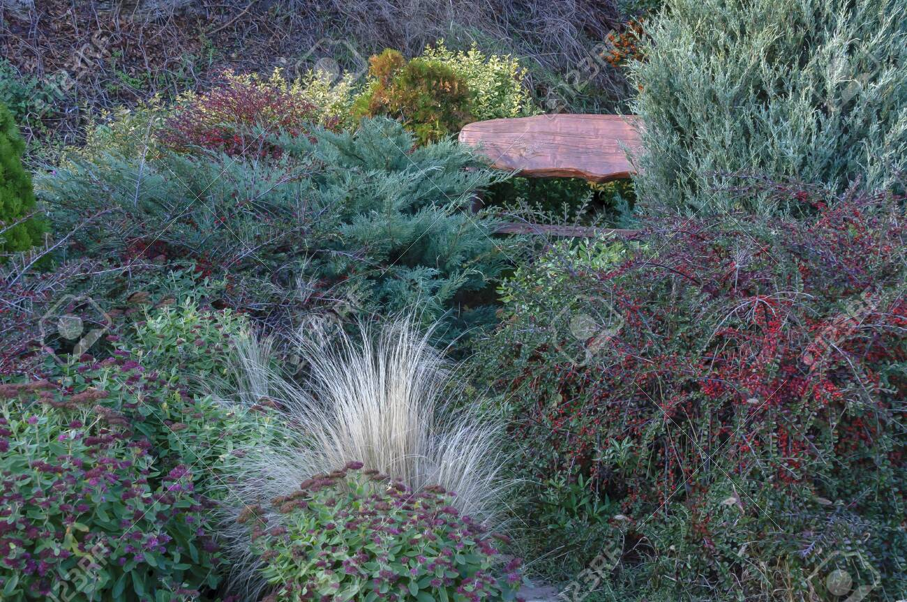 A Quiet Corner In The Autumn Garden Stock Photo Picture And