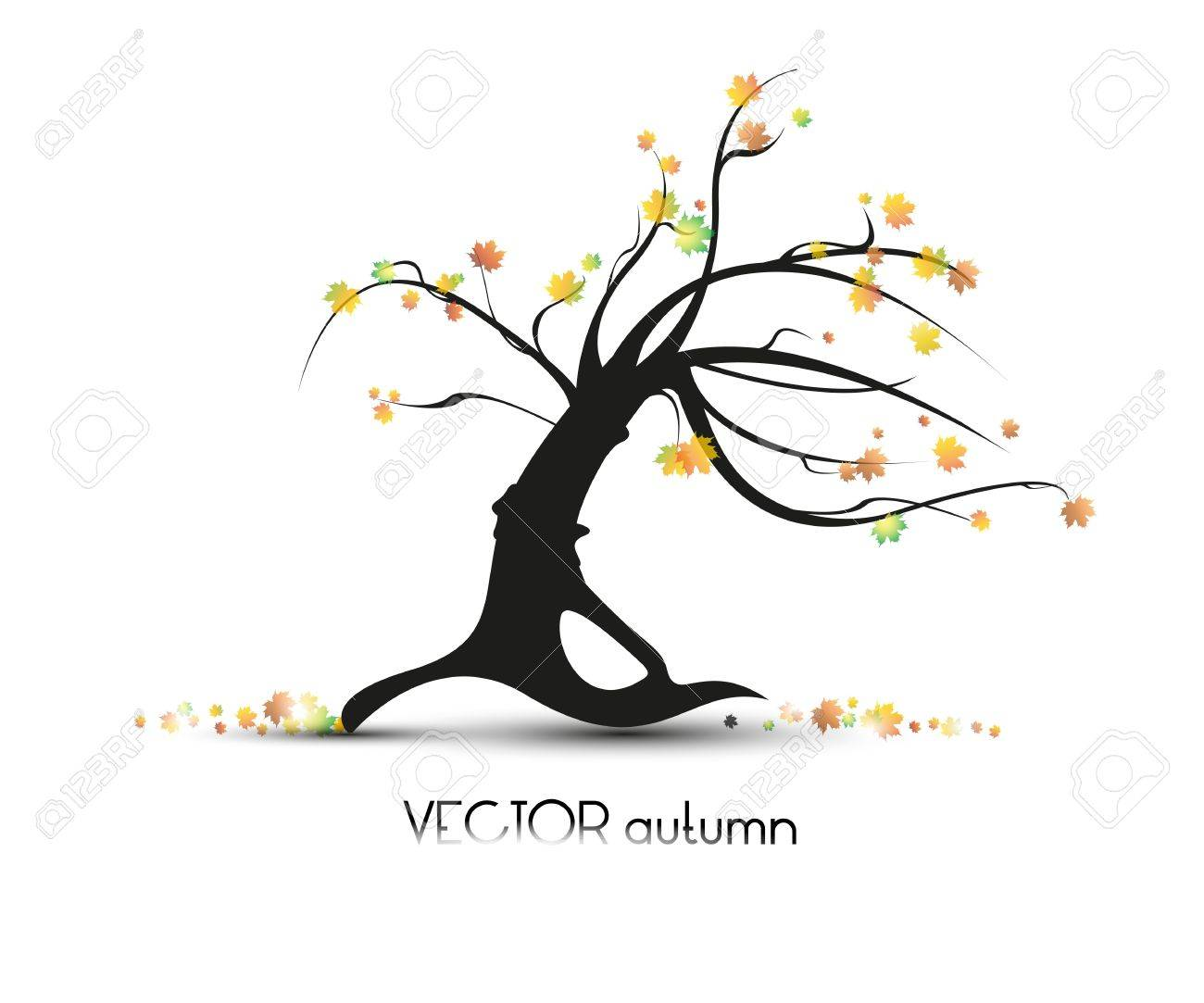 old tree on a white background Stock Vector - 10623926