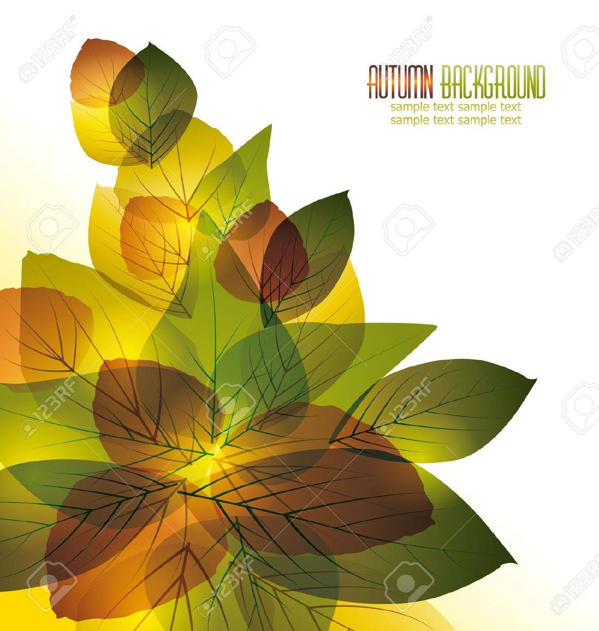 vector background with colorful autumn leaves Stock Vector - 14439416