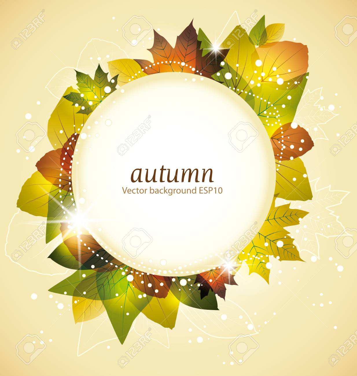colorful autumn leaves with frame for text Stock Vector - 14439417