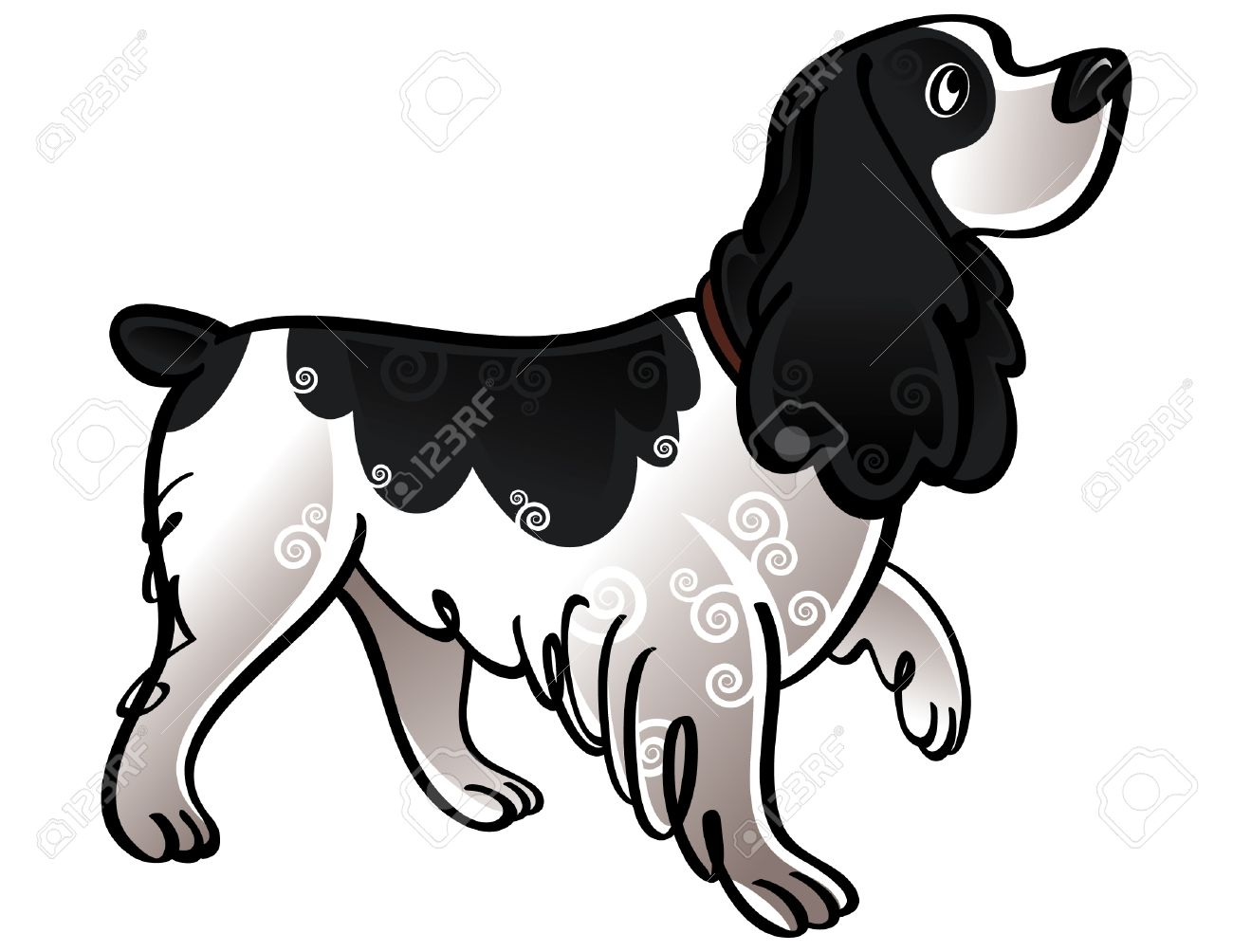 Colorful vector illustration of the dog Cocker Spaniel Stock Vector - 6488229