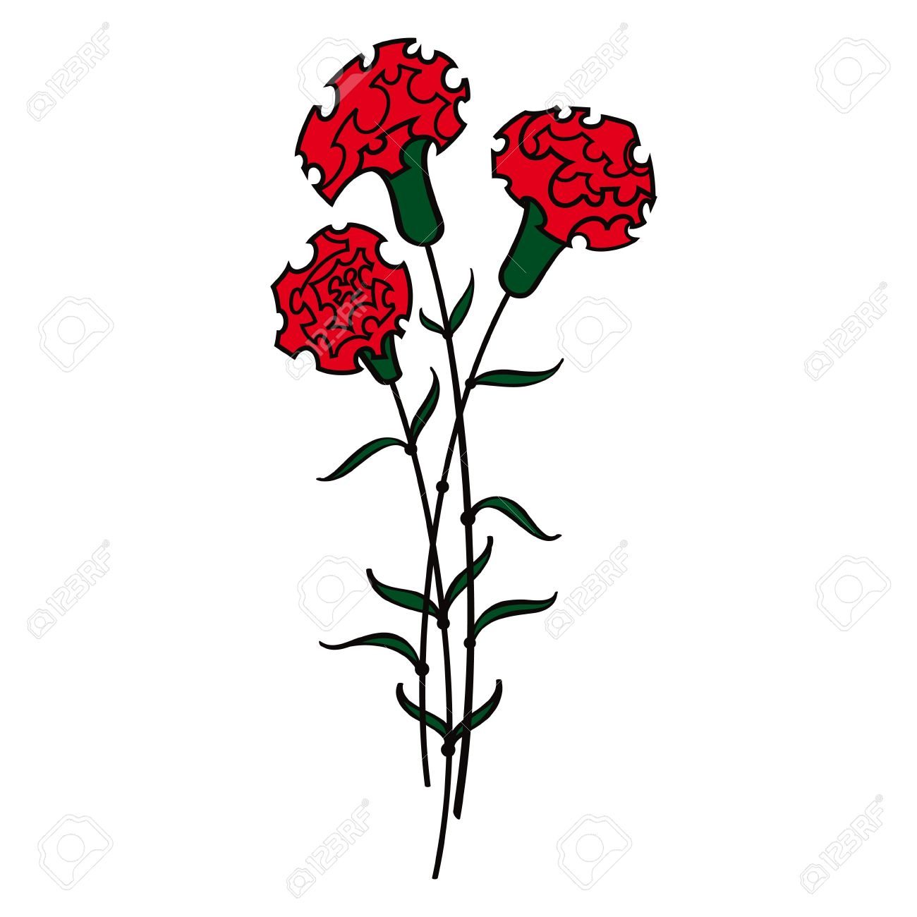 Red Carnations Flower Flora Royalty Free Cliparts Vectors And