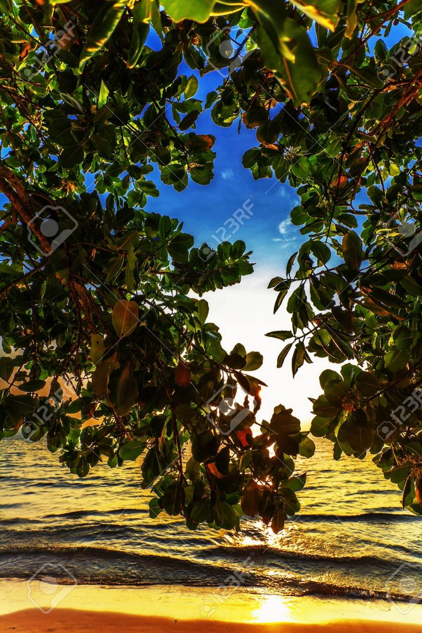 Tropical beach at beautiful sunset  Nature background Stock Photo - 17195871