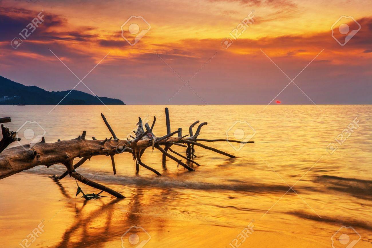 Tropical beach at beautiful sunset. Nature background Stock Photo - 19585944