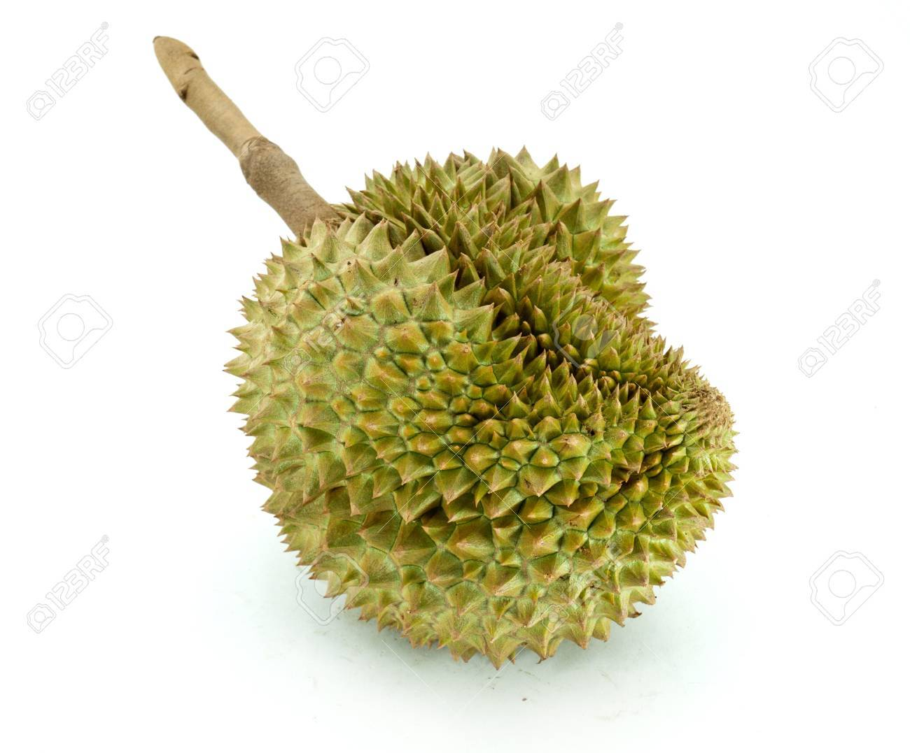King of fruits, durian on white background Stock Photo - 13291546
