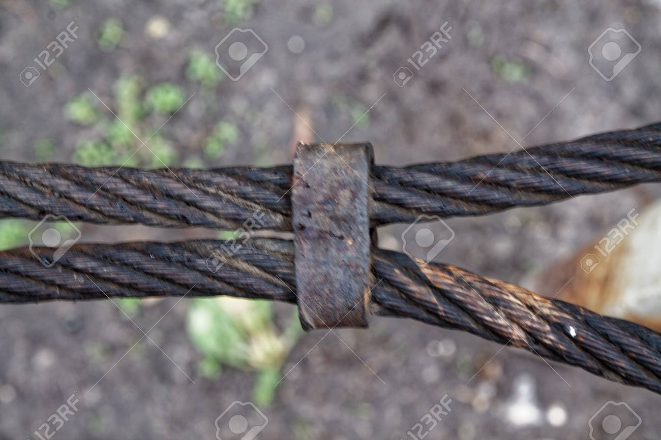 Thick Steel Rope Close Up. Bridge Fence Element. Detailed View ...