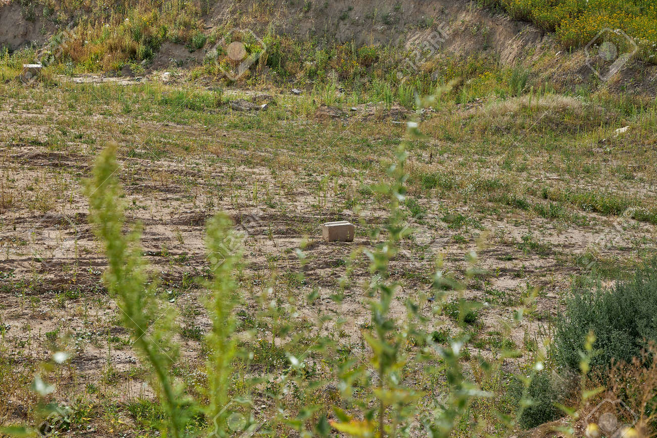 A vacant lot with a stone in the center is a place for construction. - 160082170
