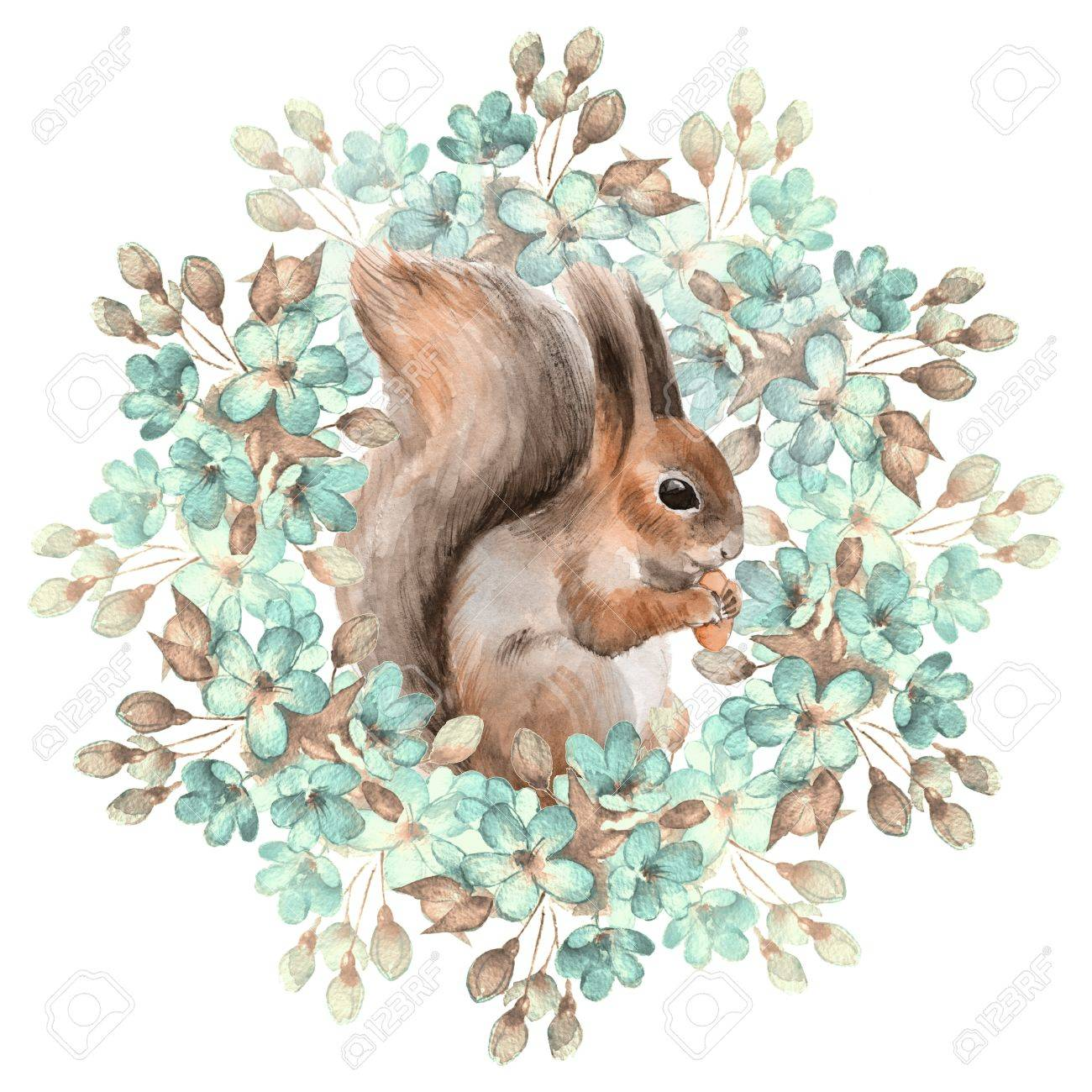 Squirrel and flowers - 50573456