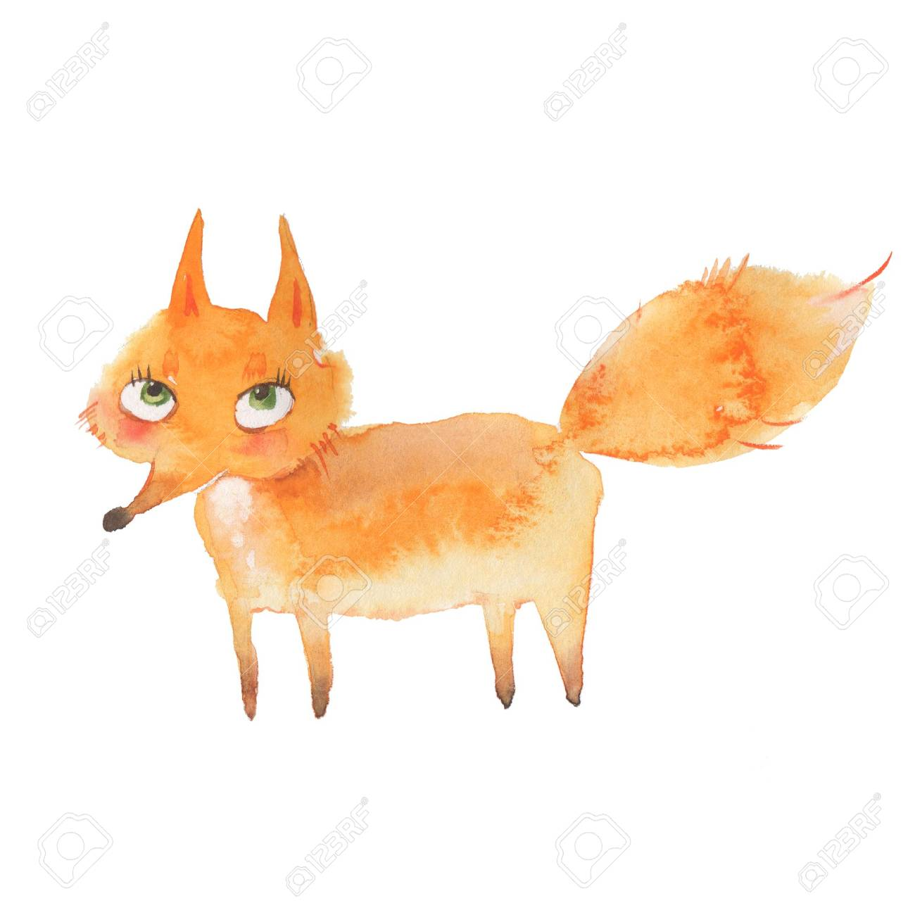 Animal set. Fox. Watercolor illustration, isolated on white - 57495750