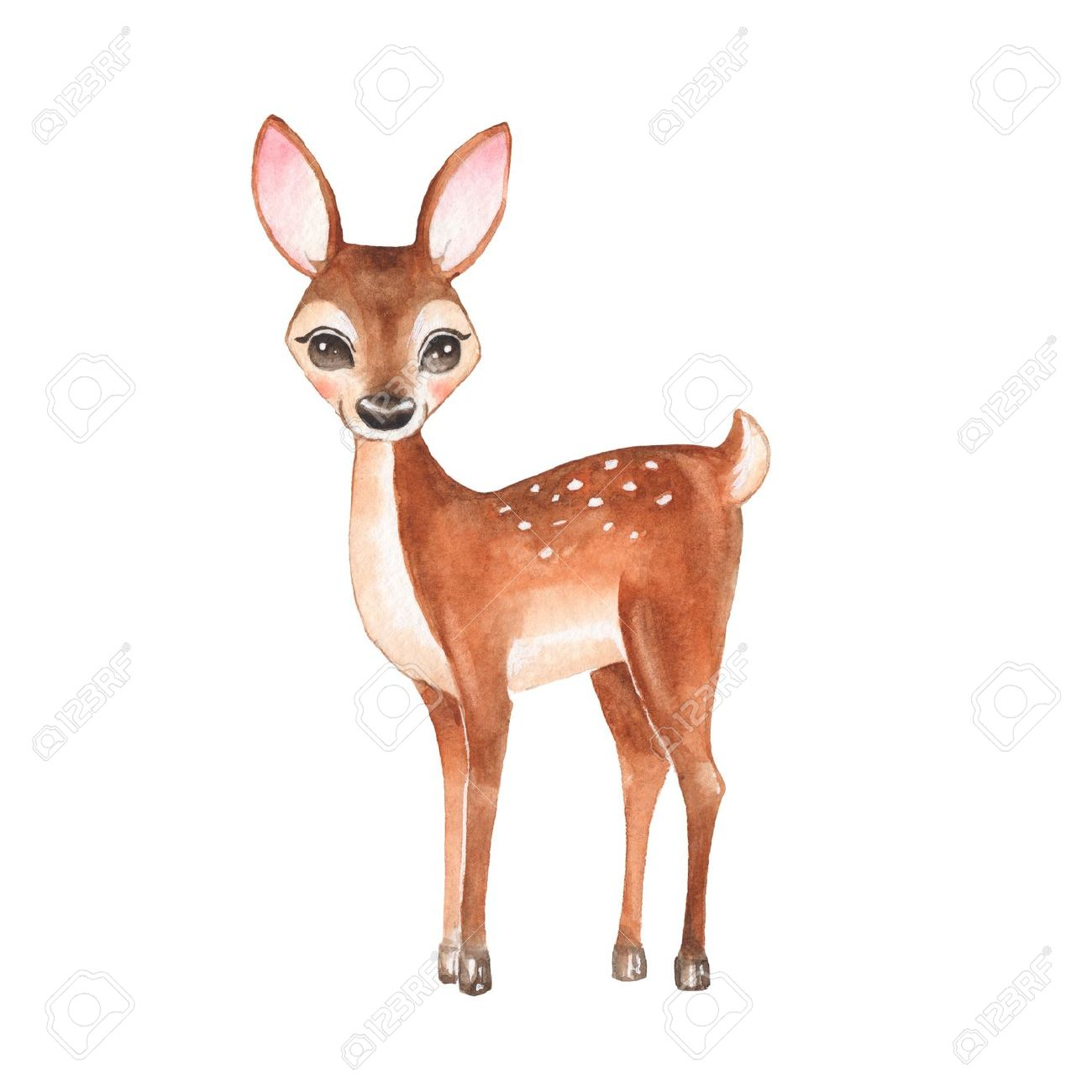 Baby Deer. Hand drawn cute deer. Cartoon illustration, isolated on white. Watercolor painting - 64237751