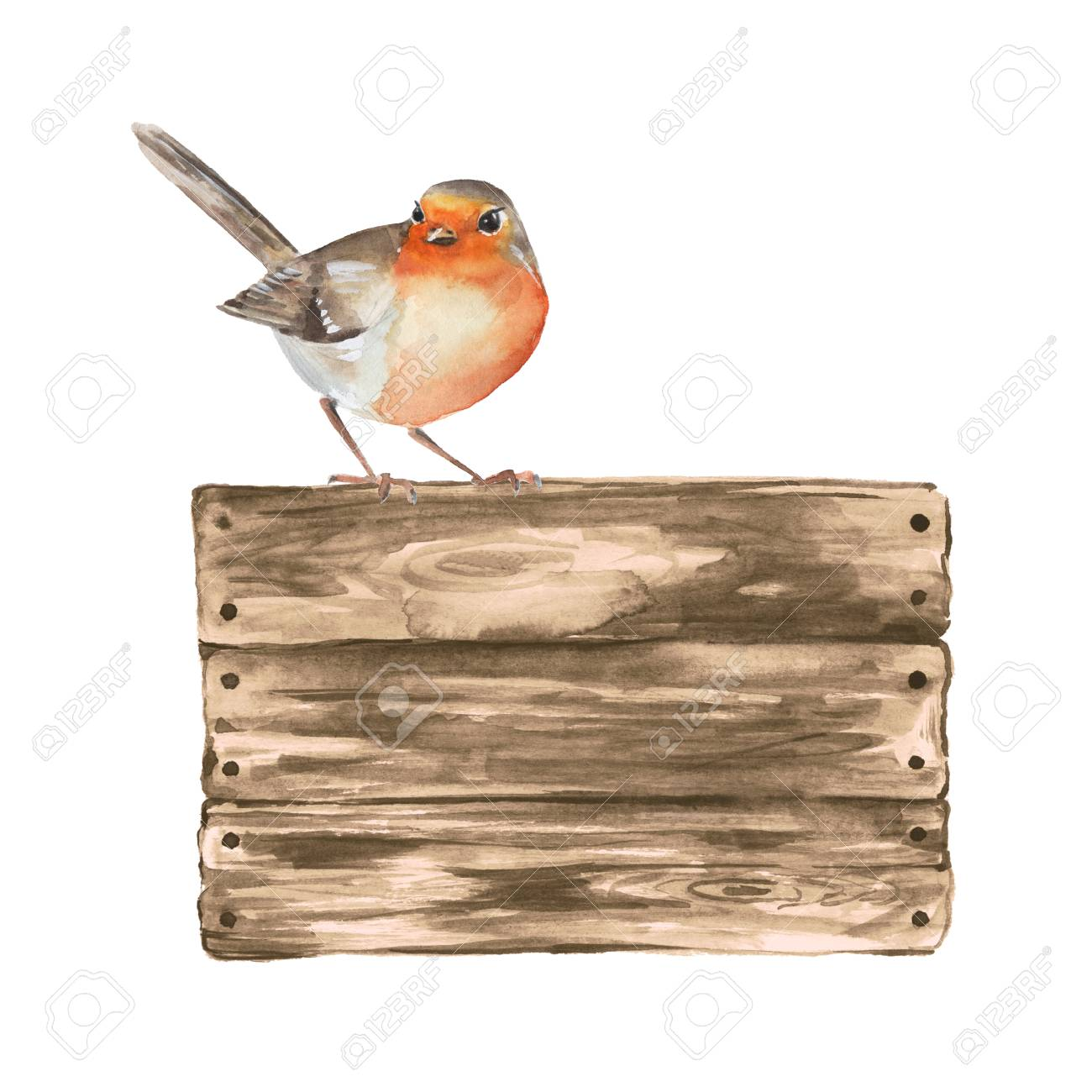 Wooden sign and robin. Watercolor illustration with a bird. - 65387643