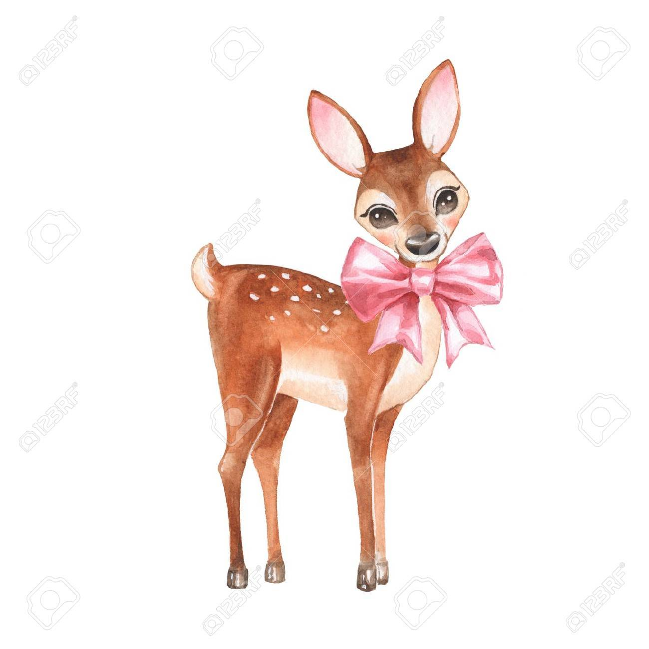 Baby Deer. Hand drawn cute fawn with a bow. Cartoon illustration, isolated on white. Watercolor painting - 68118350