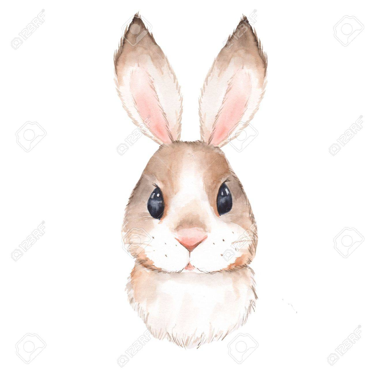 Cute rabbit. Watercolor illustration. Isolated on white background 2 - 81592468