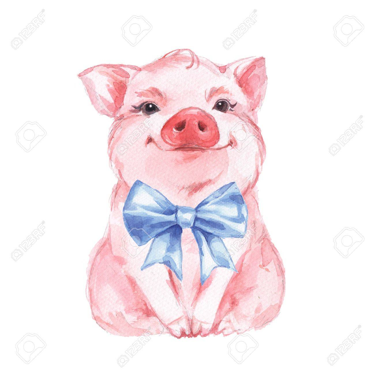 Funny pig and blue bow. Isolated on white - 85605142