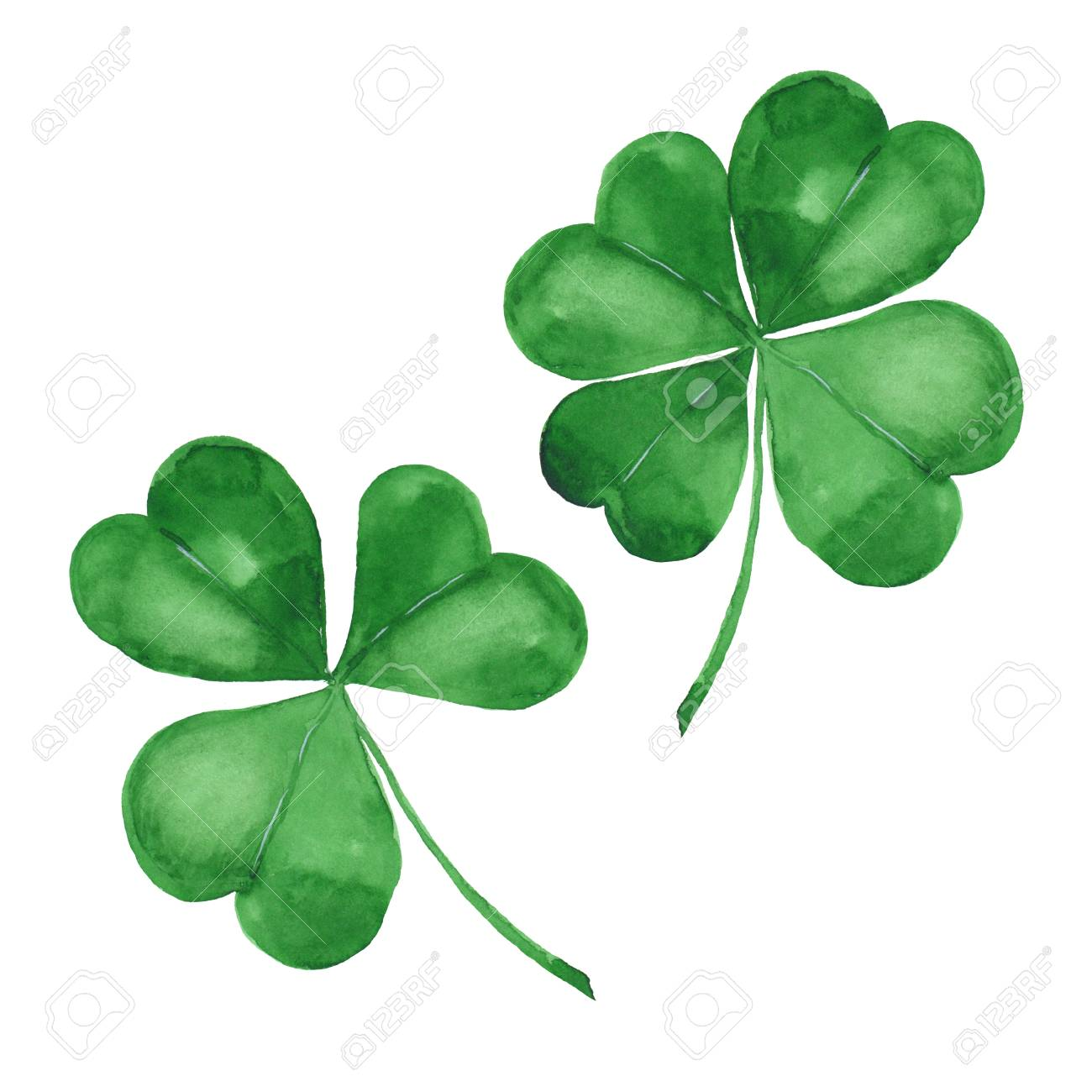 Watercolor clover. Green four leaf clover isolated on white - 114531726