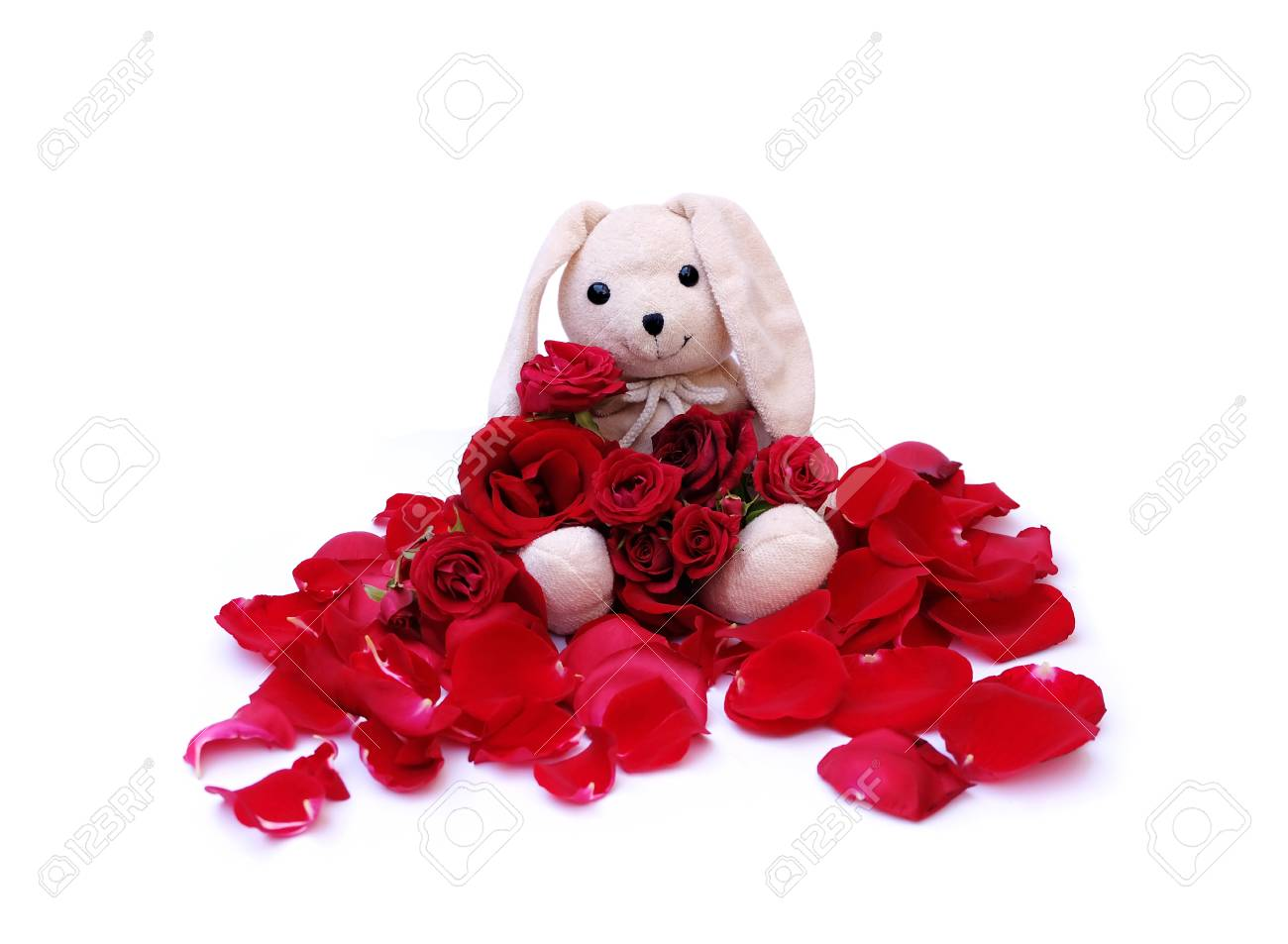 Cute Rabbit Doll Tiene Un Ramo De Rosas Rojas Para Alguien Especial En Un Día Específico