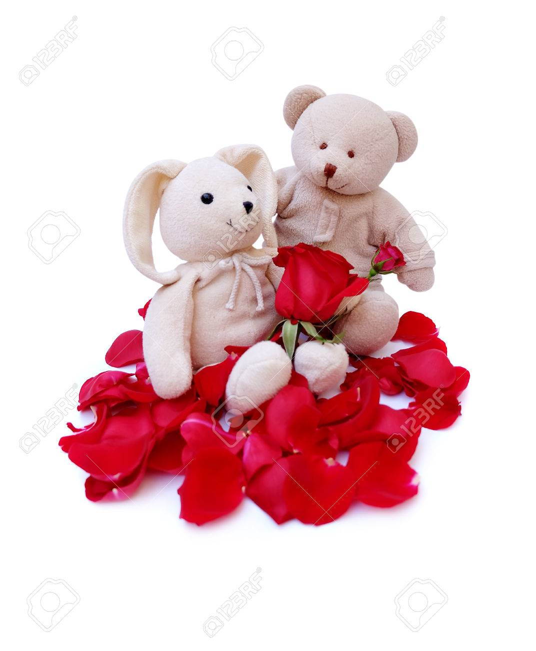 Cute teddy bear Hold red roses For a special someone on a specific day. - 80936875