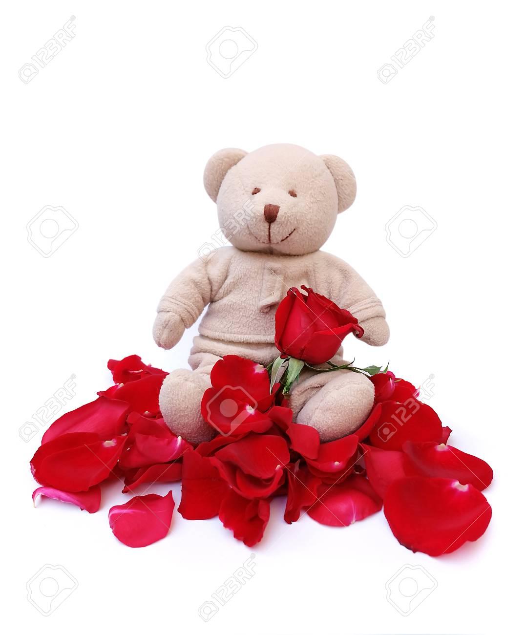 Lindo Oso De Peluche Sostenga Rosas Rojas Para Alguien Especial En