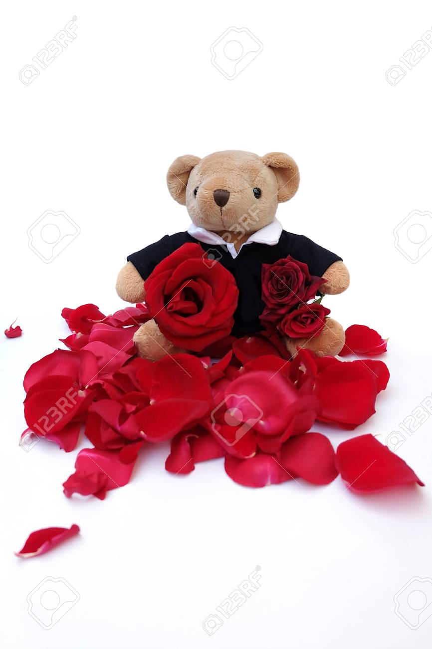 Cute teddy bear hold red roses for a special someone on a specific cute teddy bear hold red roses for a special someone on a specific day stock izmirmasajfo