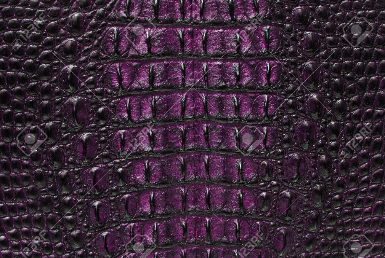 Сучки кожа и кости 19 фотография