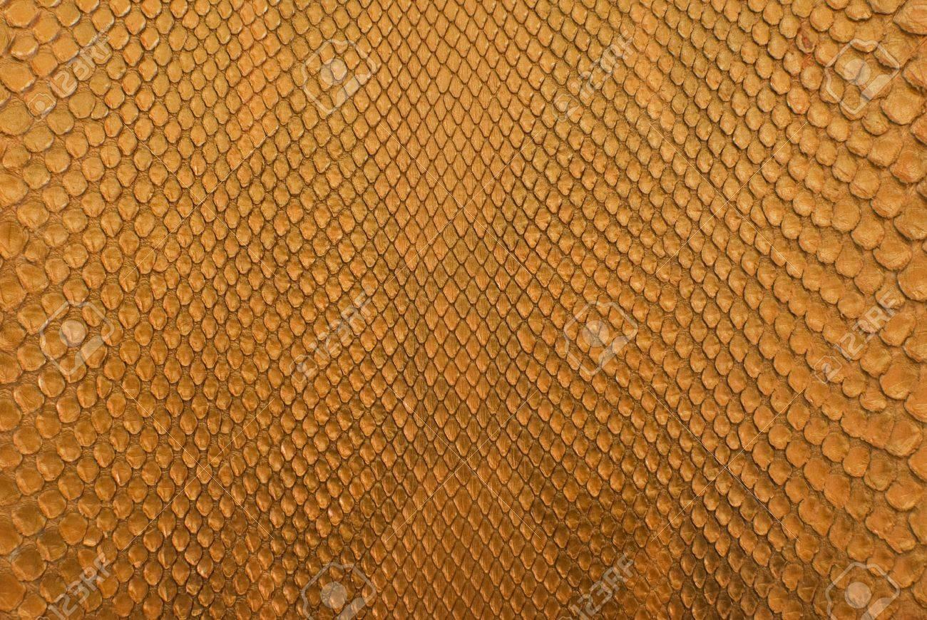 Gold python snack skin texture background. Stock Photo - 10994251