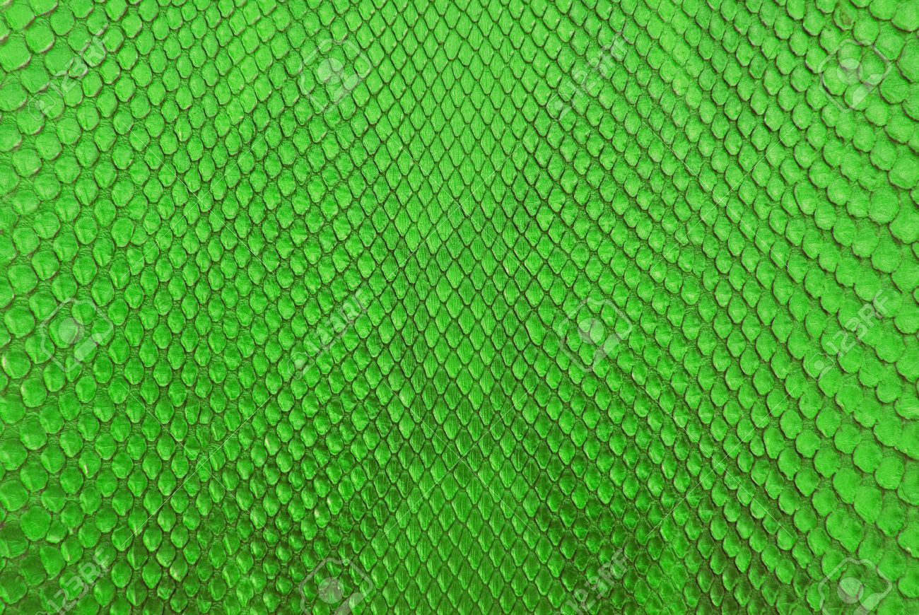 Green Python Snake Skin Texture Background Stock Photo Picture And