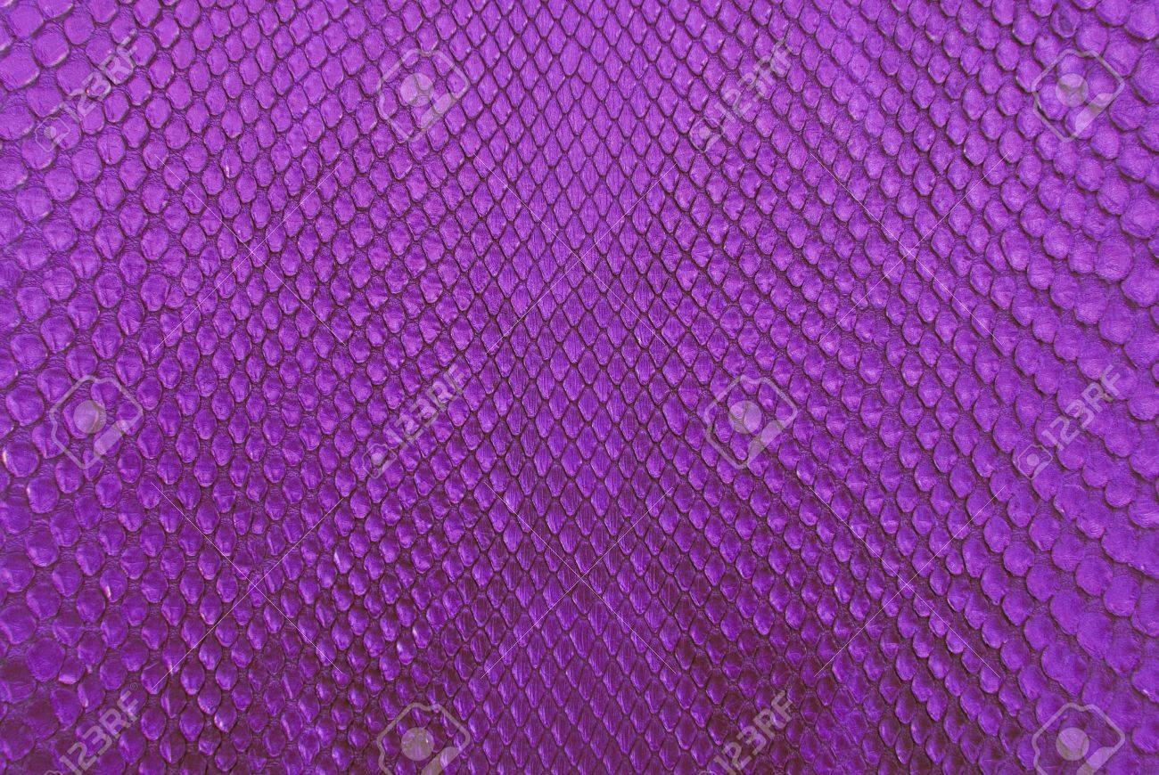 Fotos piel púrpura