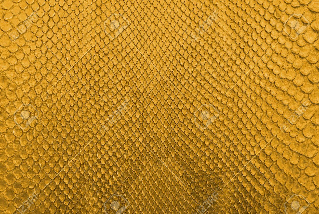 Gold python snake skin texture background Stock Photo - 13230885