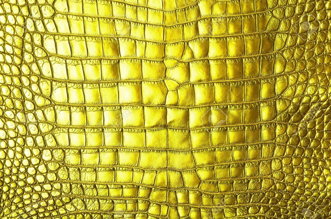 Vintage crocodile skin texture Stock Photo - 13284927