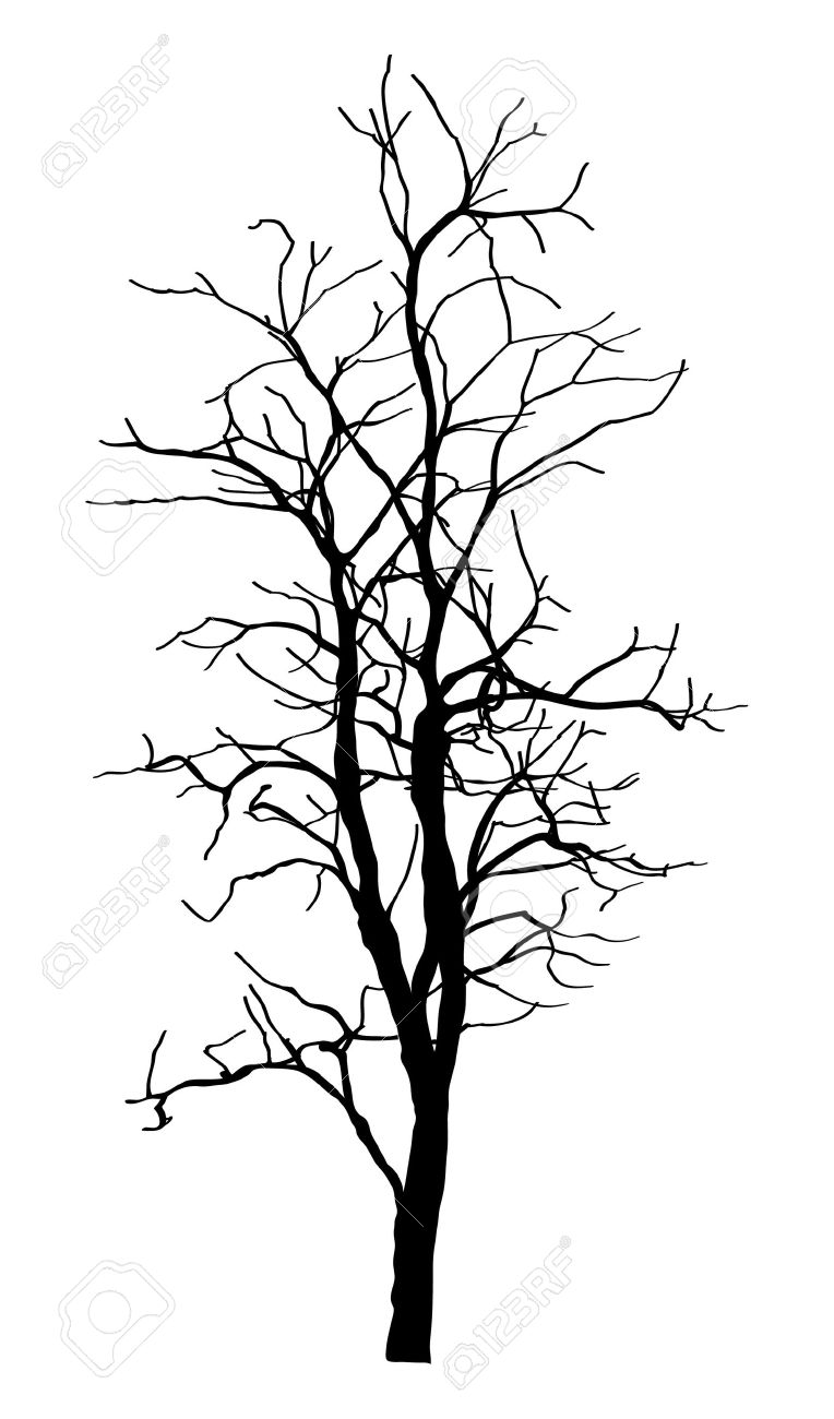 dead tree without leaves vector illustration sketched royalty free rh 123rf com dead tree branch vector dead tree vector image