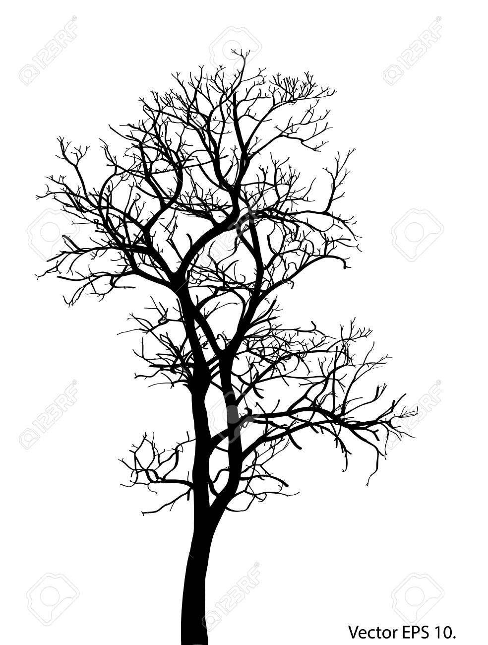 dead tree without leaves vector illustration sketched eps 10 rh 123rf com dead tree vector image dead tree silhouette vector