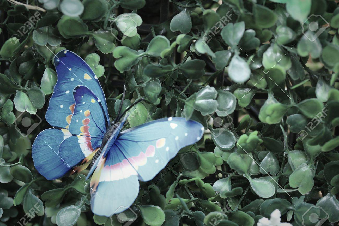 Artificial Butterfly Garden Decor Stock Photo   37999515