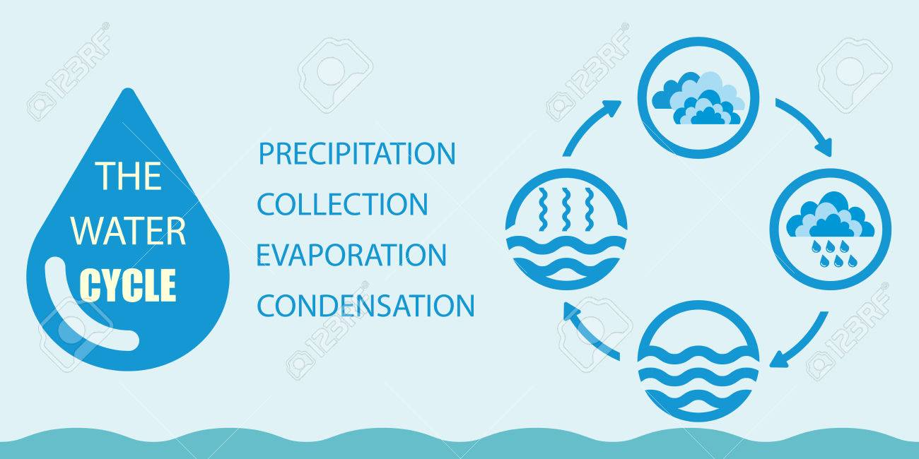 Water cycle infographics the water cycle vector diagram of vector water cycle infographics the water cycle vector diagram of precipitation collection evaporation and condensation icons set vector illustration ccuart Choice Image