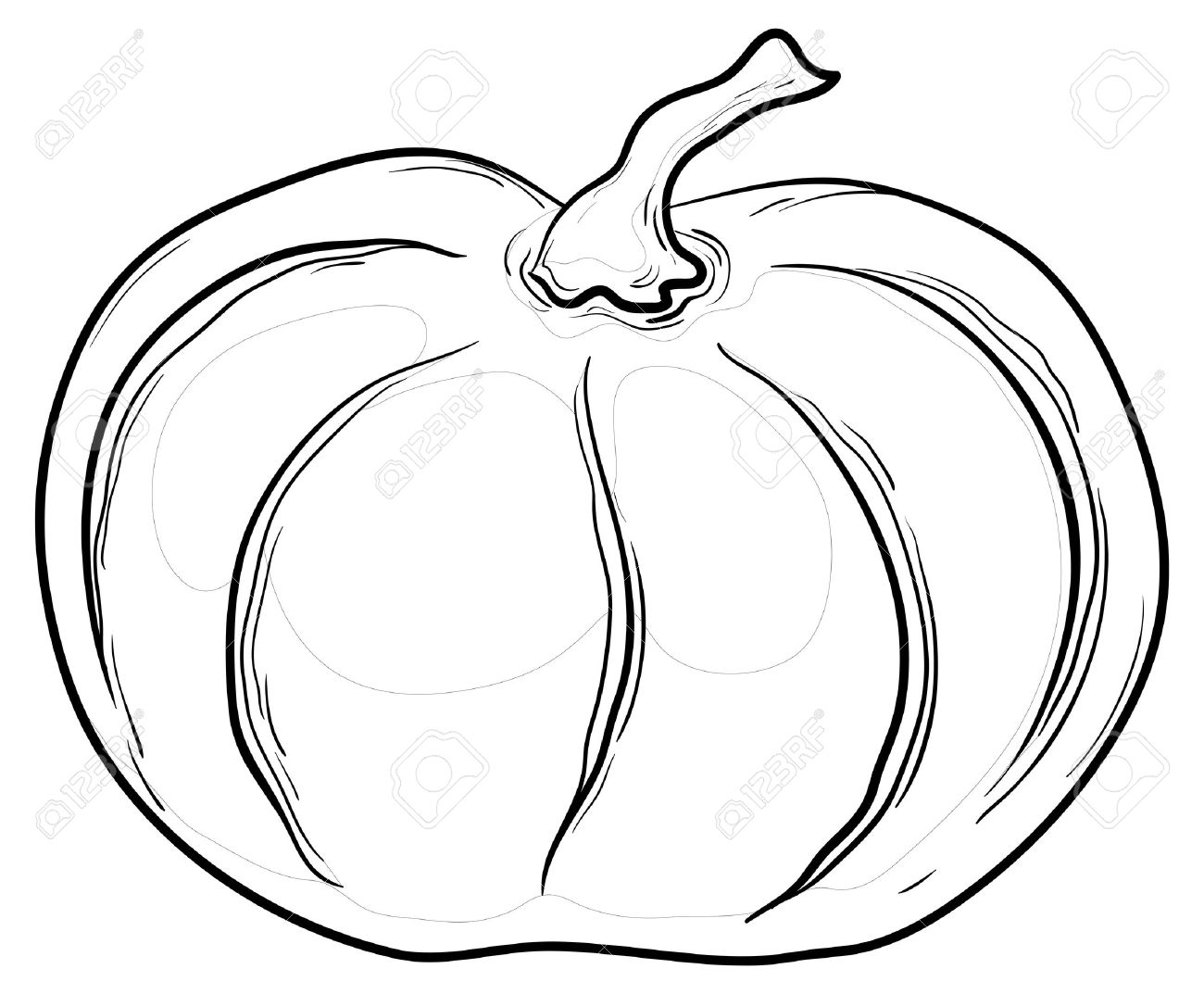 Vegetable Pumpkin Vector Monochrome Graphic Contours On White