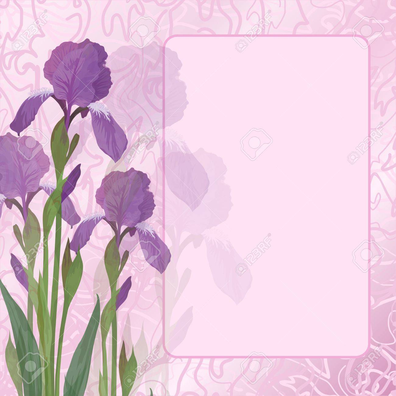 Flowers iris and green leaves on pink background with frame and curves  Vector eps10 Stock Vector - 12886989