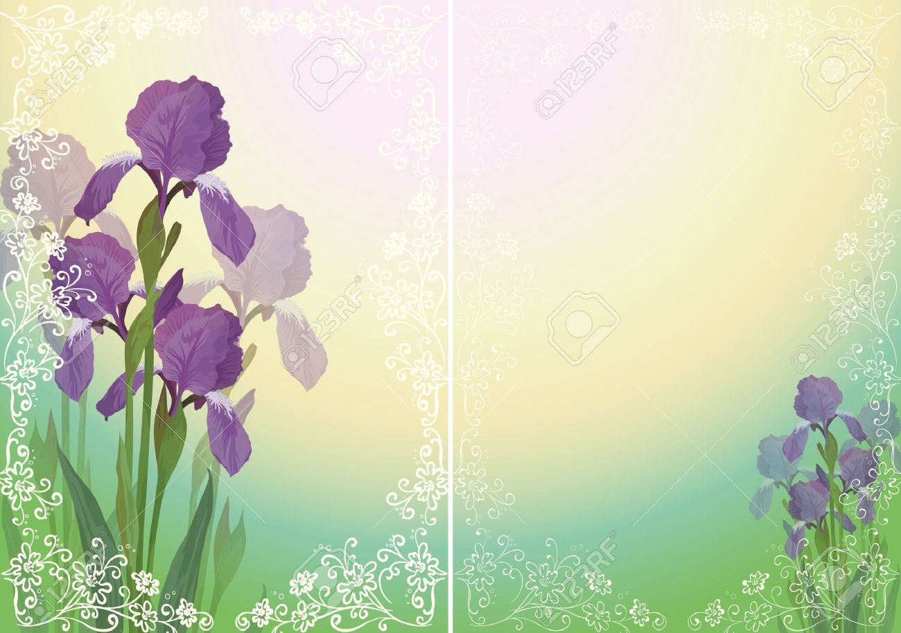 Background for greetings card with flower iris and floral outline pattern  Vector eps10, contains transparencies Stock Vector - 14309169