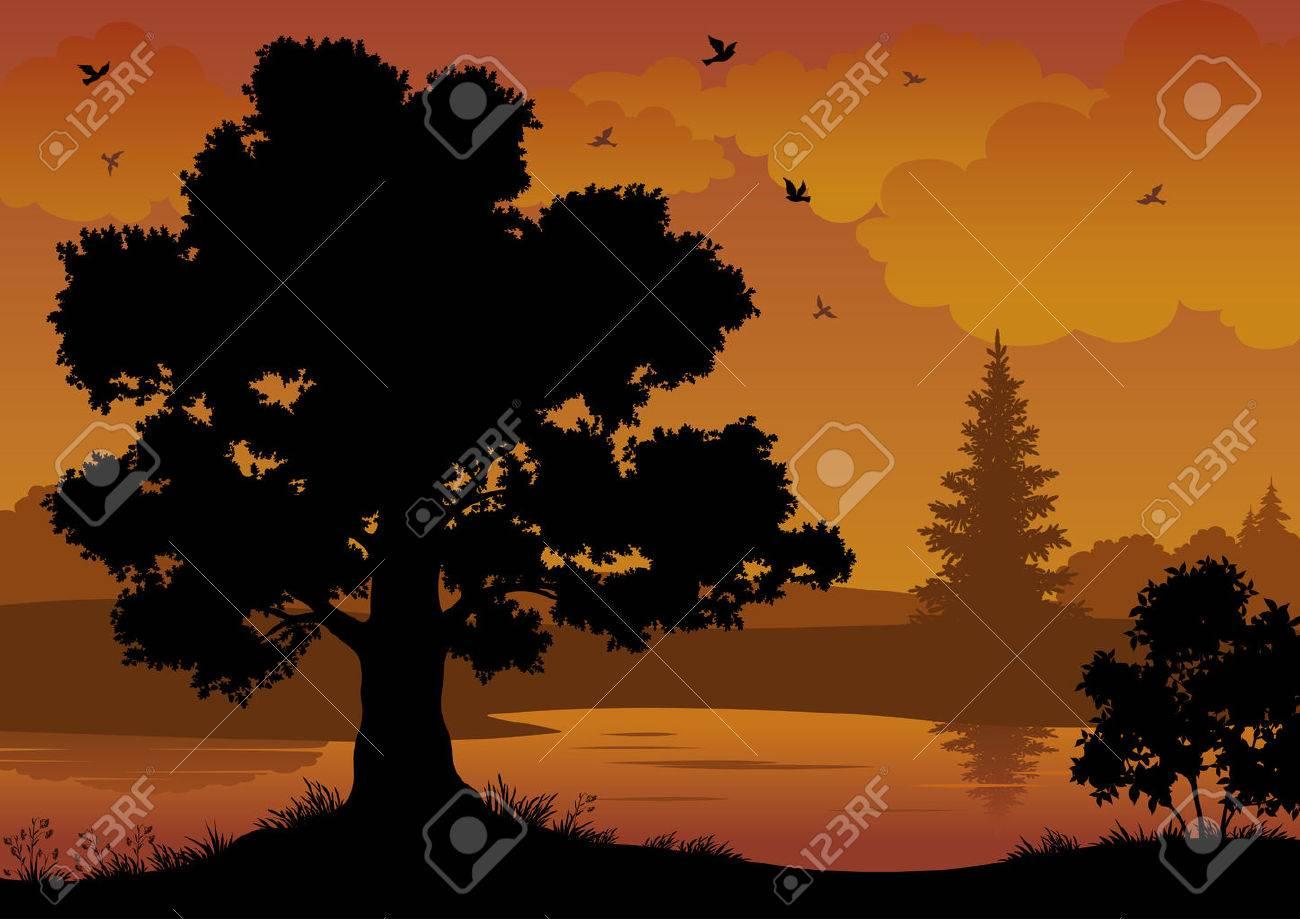 Evening contour black and orange landscape: trees, river and birds. Vector - 24799470