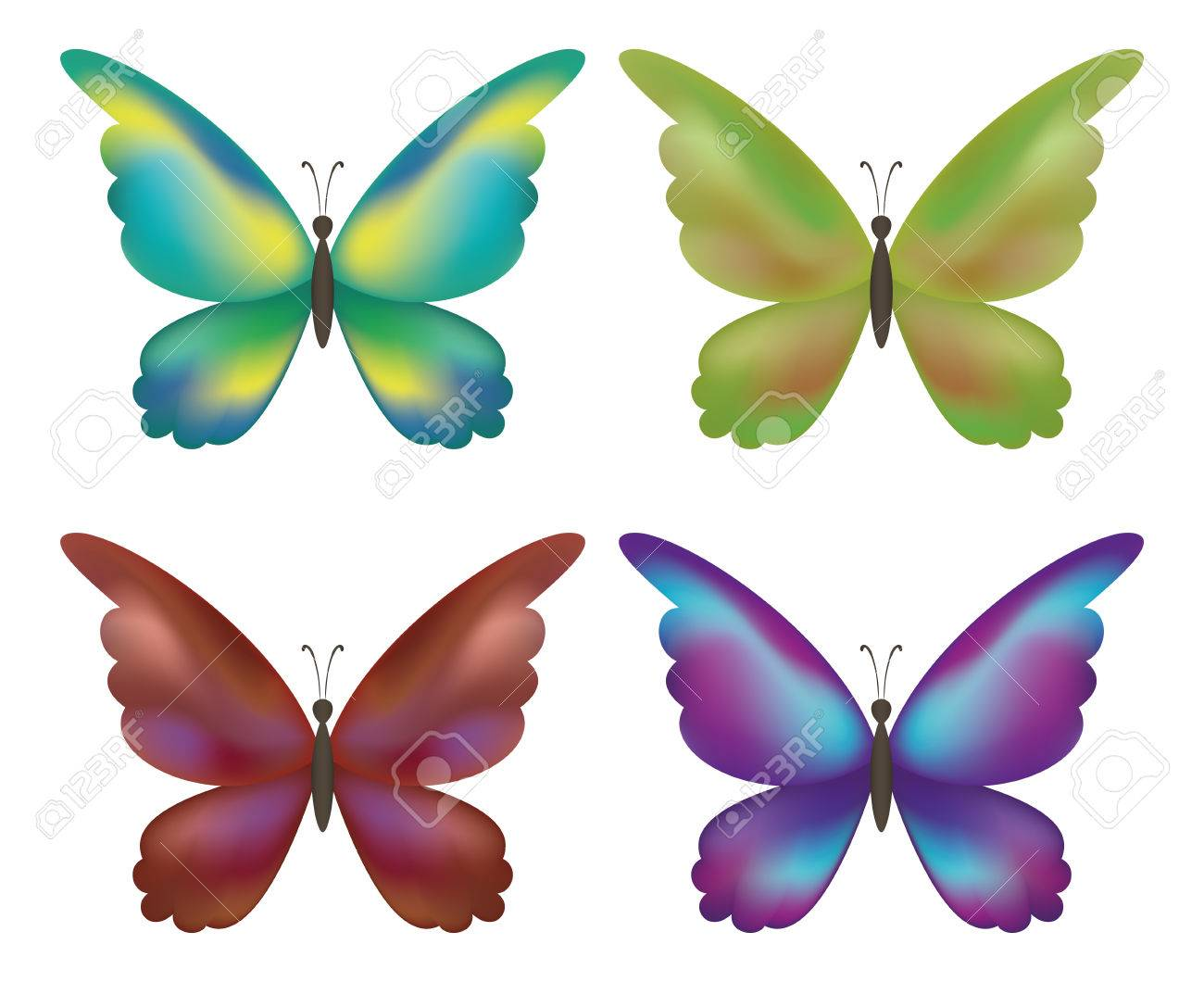 Set Colorful Butterflies With Opened Wings On White Background ...